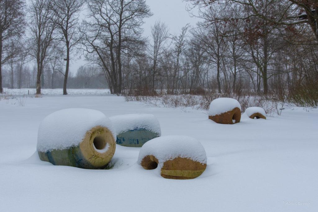 kralen in de sneeuw